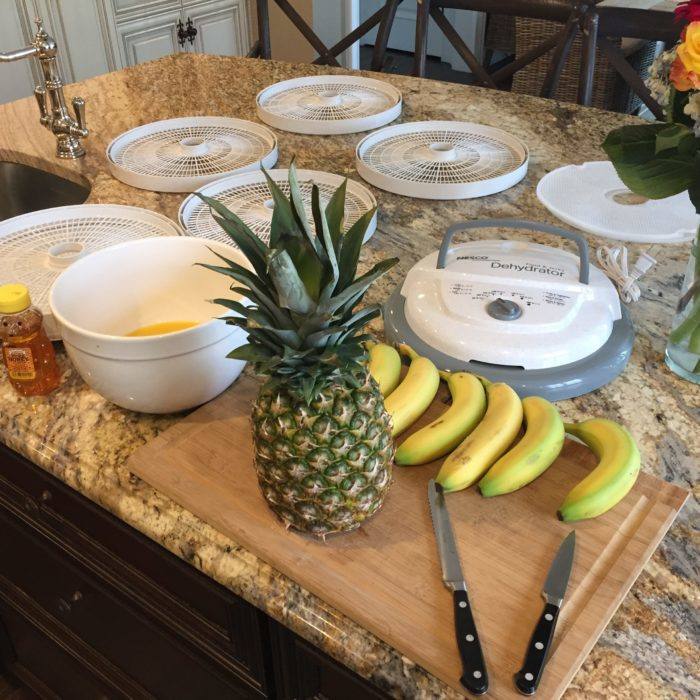 Nesco Snackmaster + Fruit
